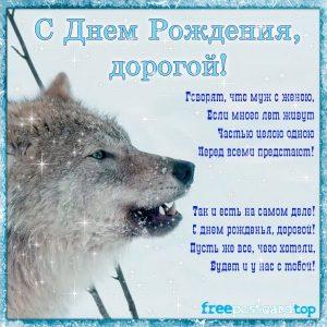 С днем рождения волк открытка023