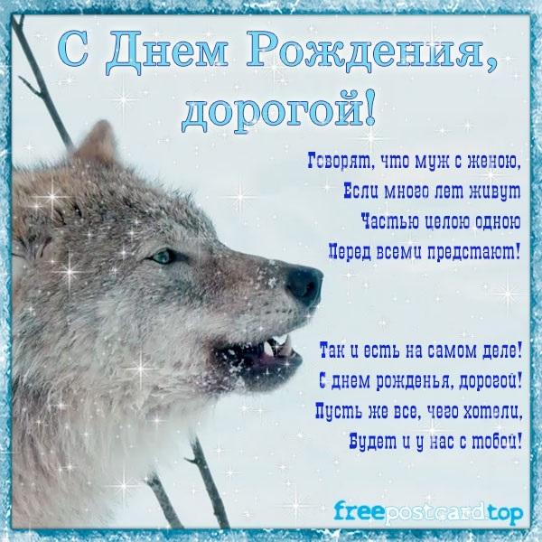открытка мужчине с рисунком волка