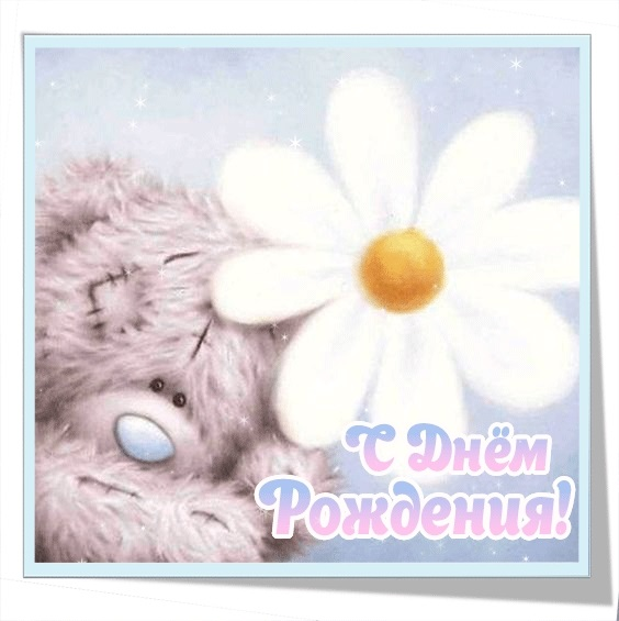 С днем рождения открытки с мишками   красивые 020