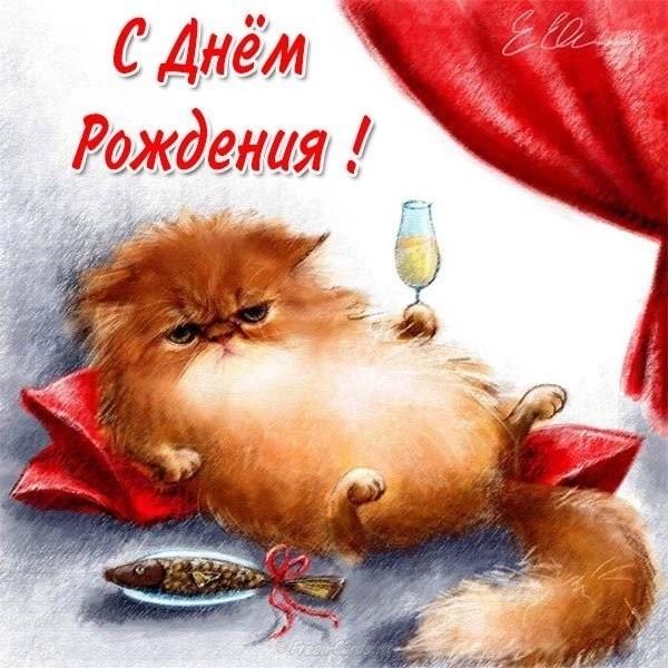 С днем рождения поздравляют животные012