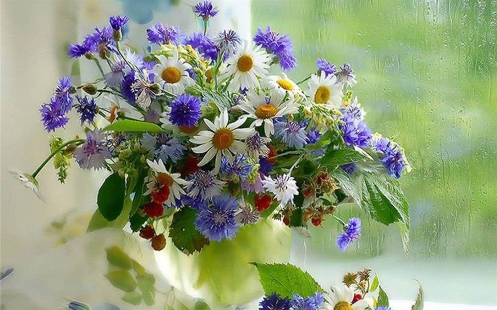 Картинках, полевые цветы открытки с днем