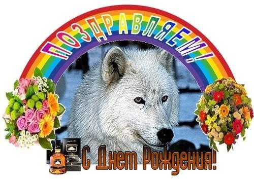 Поздравление с днем рождения волка смотреть в ютубе