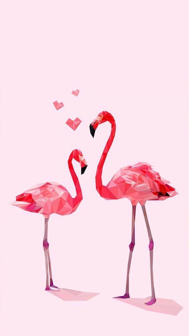 Фламинго обои на айфон красивые и классные (13)