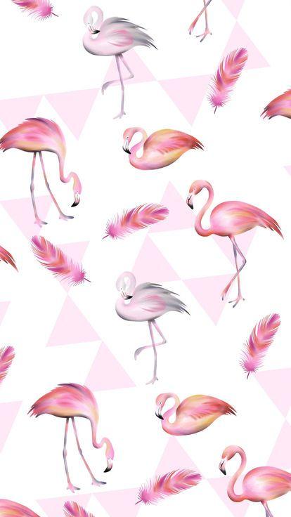 Фламинго обои на айфон красивые и классные (18)
