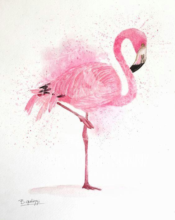 Фламинго обои на айфон красивые и классные (29)