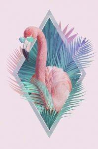 Фламинго обои на айфон   красивые и классные (30)