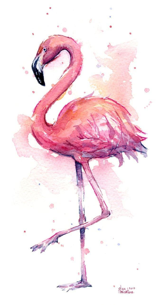 Фламинго обои на айфон красивые и классные (8)