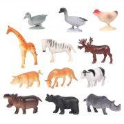 Фото домашних животных и диких животных 019