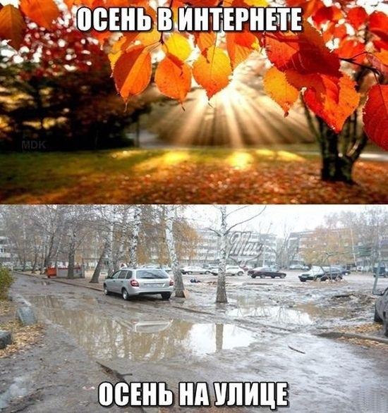 картинки приколы про осень с надписями 009