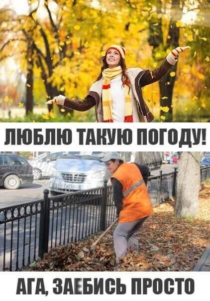 картинки приколы про осень с надписями 016
