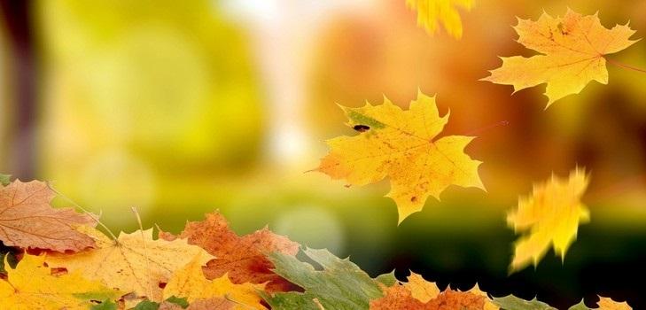 красивые картинки про осень с детьми 016