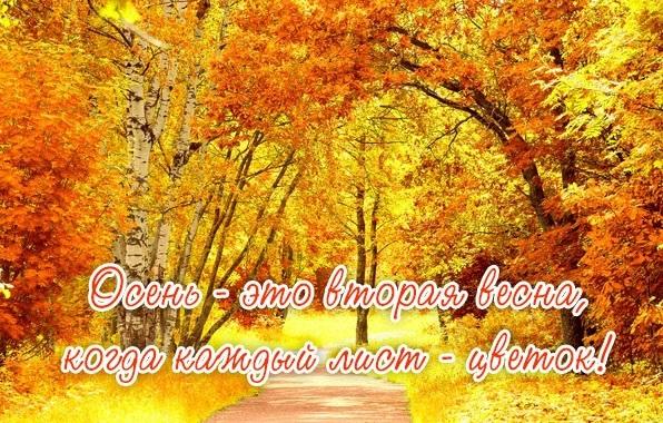 красивые картинки с надписями про осень 001