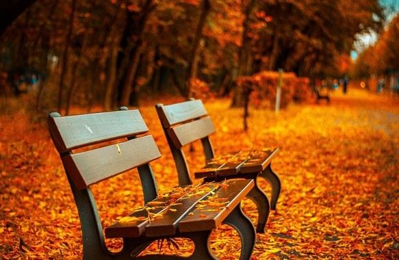 красивые картинки с надписями про осень 012