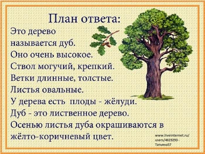 лесные деревья осенью картинки для детей 002