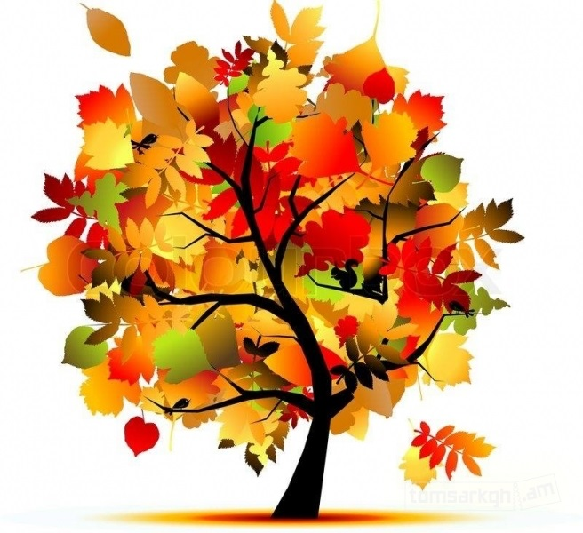 лесные деревья осенью картинки для детей 008