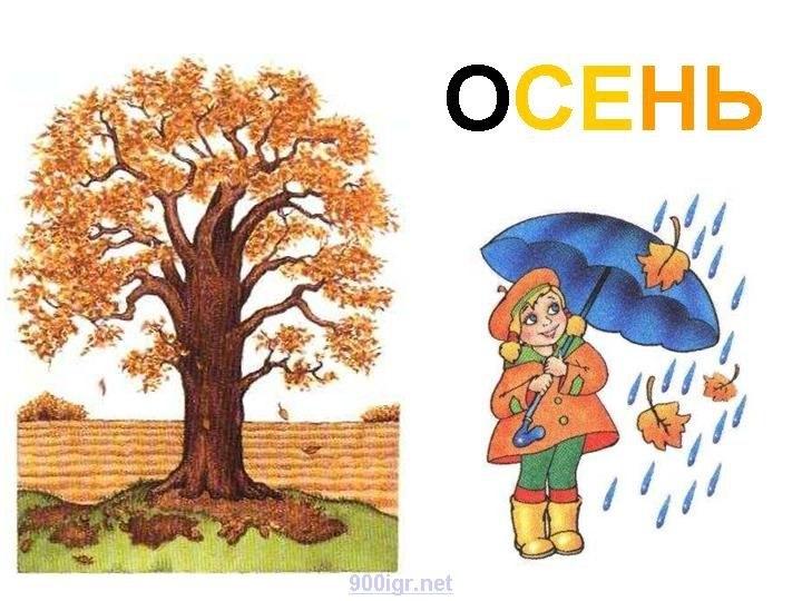 лесные деревья осенью картинки для детей 017