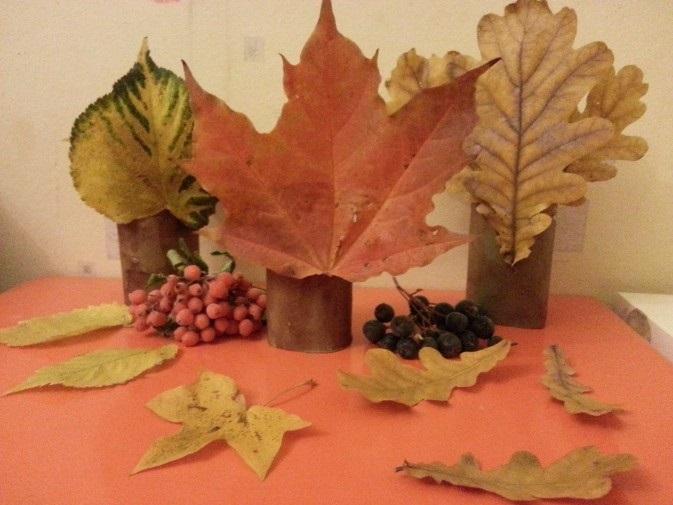 лесные деревья осенью картинки для детей 020