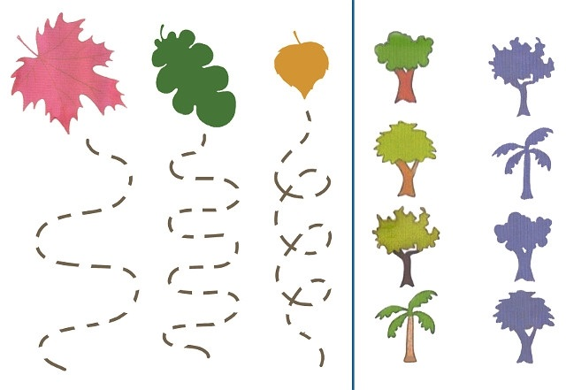 лесные деревья осенью картинки для детей 028