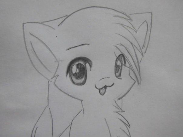 Аниме рисунки кошки для детей 008