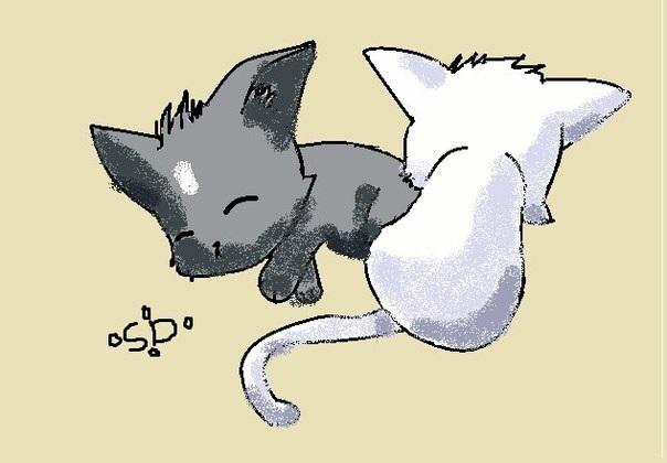 Аниме рисунки кошки для детей 013