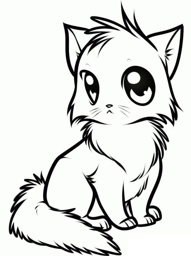 Аниме рисунки кошки для детей 018