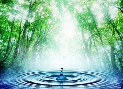 Всемирный день мониторинга воды 008