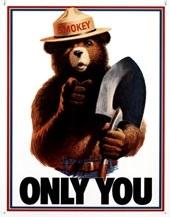 День защиты леса от пожара в США 017