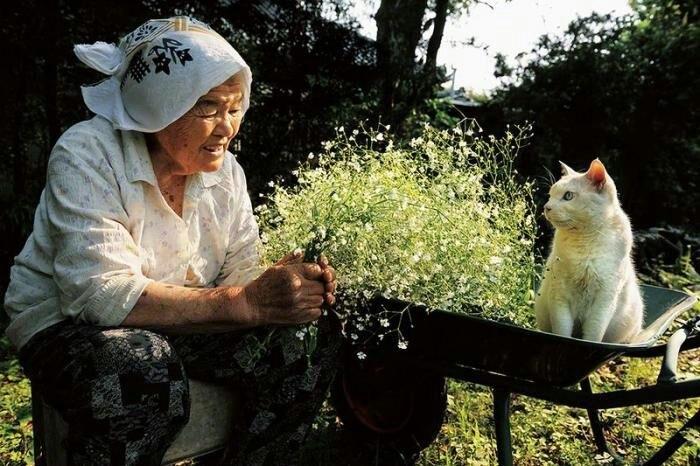 День почитания пожилых людей в Японии 004