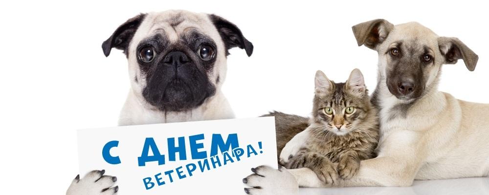 Открытки день ветеринарии, для
