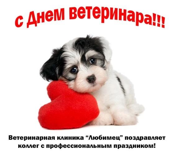 День работников ветеринарной медицины Украины 009
