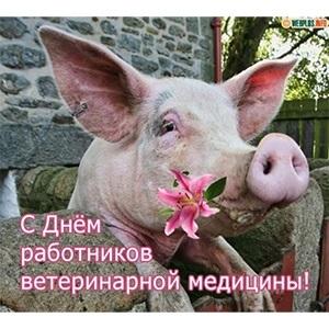 День работников ветеринарной медицины Украины 011