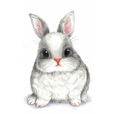 Зайки и зайчики милые рисунки (18)