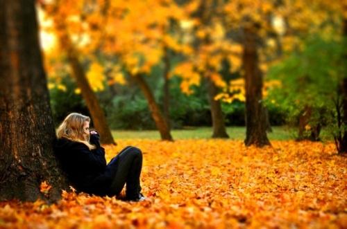 Идеи фотосессии осенью в лесу 022