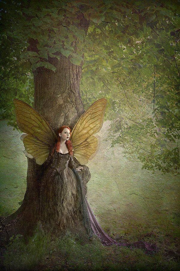 Картинки и арты русалки, феи, эльфы, ангелы (15)