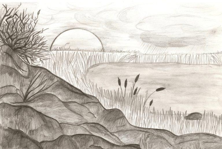 Картинки пейзаж для срисовки 013