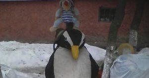 Картинки пингвин грустит один 013