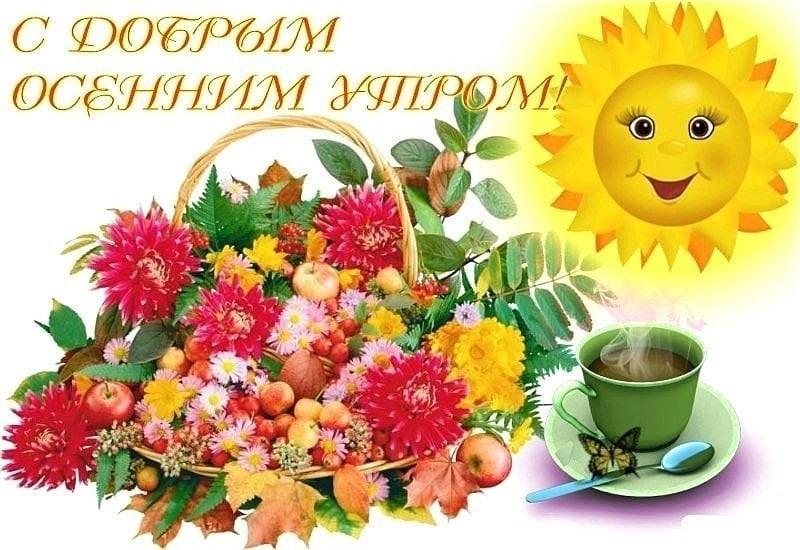 Открытки с пожеланием доброго утра и хорошего дня женщине осенние, прикол