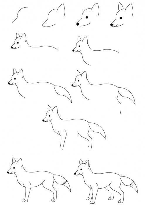 Лиса карандашом картинки для детей 007