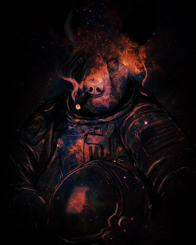 Медведь красивые арты 011