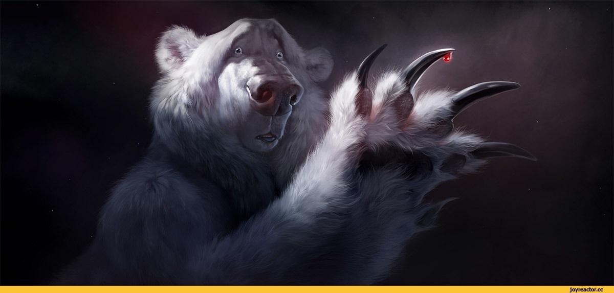 Медведь красивые арты 013