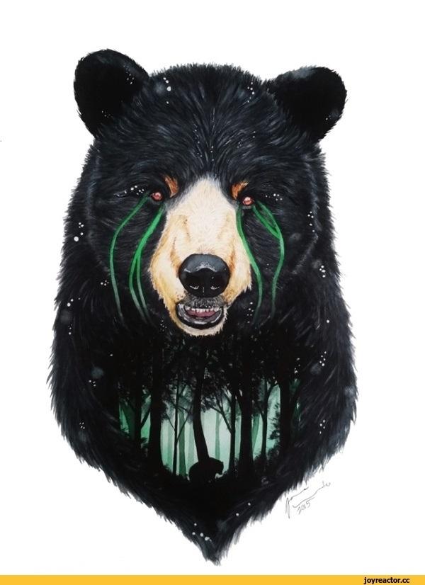 Медведь красивые арты 015