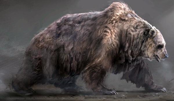 Медведь красивые арты 018