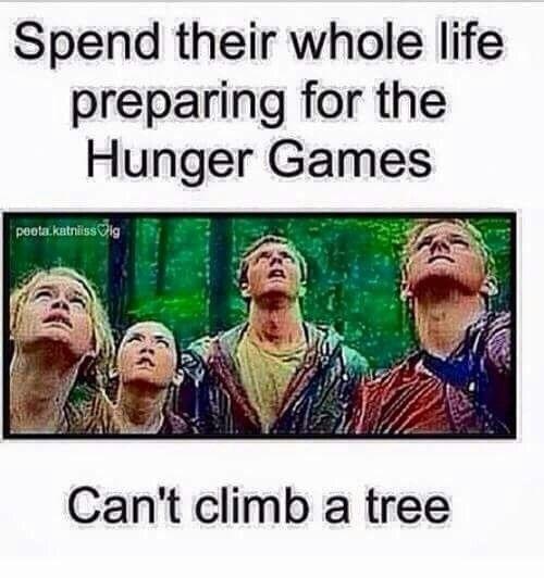Мемы голодные игры 017