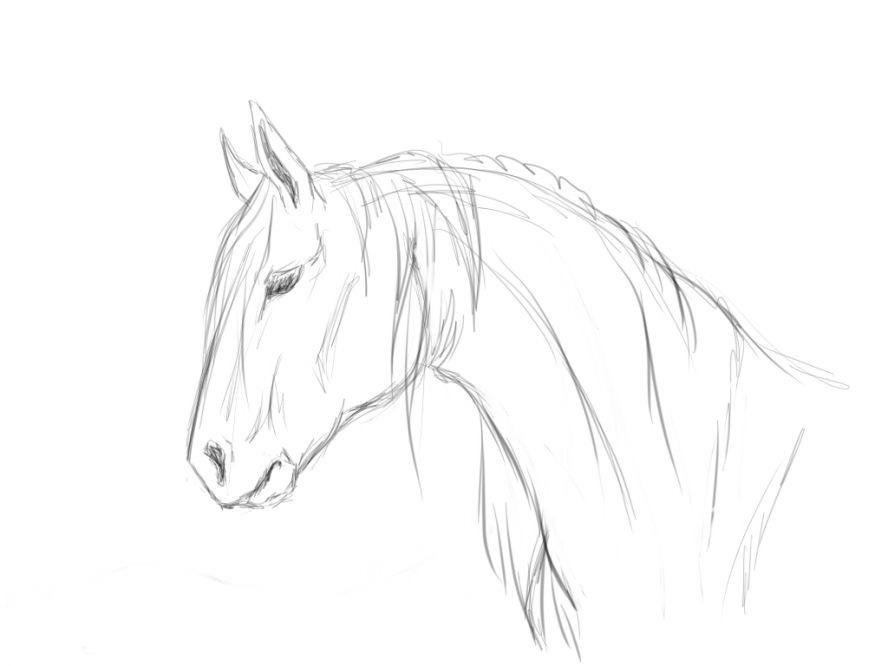 Картинки лошадка для срисовки