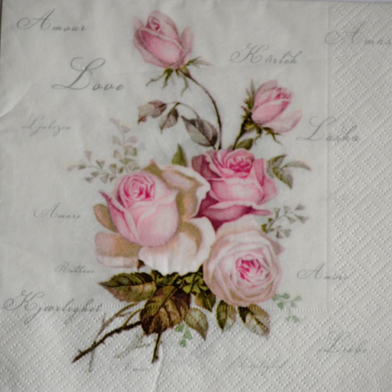Норвежская роза   подборка фотографий (5)