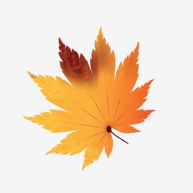 Орнамент из осенних листьев картинки и фото 003
