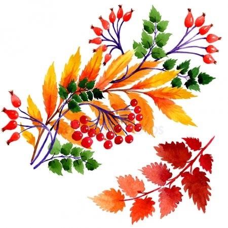 Орнамент из осенних листьев картинки и фото 008