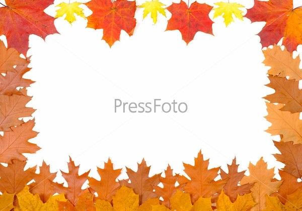 Орнамент из осенних листьев картинки и фото 009
