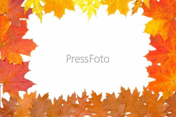Орнамент из осенних листьев картинки и фото 010
