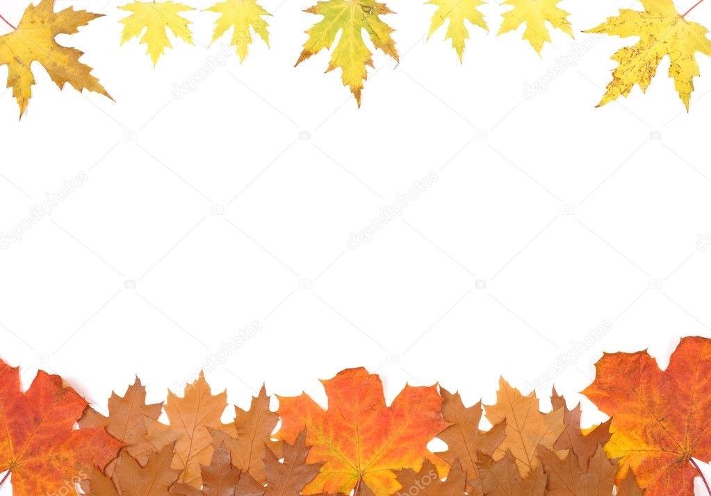 Орнамент из осенних листьев картинки и фото 021